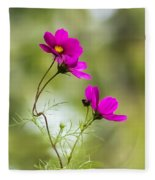 Purple Cosmos Flowers Square Fleece Blanket