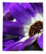 Purple Daisy Fleece Blanket