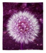 Purple Dandy Fleece Blanket