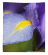 Purple Dutch Iris Flower Macro Fleece Blanket