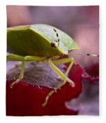 Purple Eyed Green Stink Bug Fleece Blanket