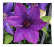 Purple Floral Fleece Blanket