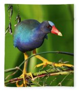 Purple Gallinule Fleece Blanket
