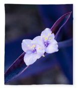 Purple Heart Flowers Fleece Blanket