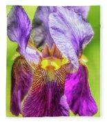 Purple Iris 2018 Fleece Blanket