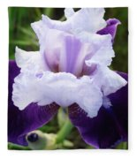 Purple Iris Flower Art Prints Garden Floral Baslee Troutman Fleece Blanket