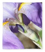 Purple Iris With Focus On Bud Fleece Blanket