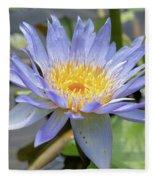Purple Water Lily Flowers Blooming In Pond Fleece Blanket