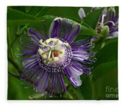 Purple Passion Flower Fleece Blanket
