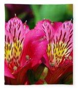 Purple Peruvian Lily Fleece Blanket