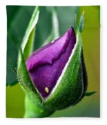 Purple Rose Bud Fleece Blanket