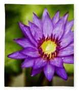 Purple Sunrise Fleece Blanket