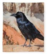 Quoth The Raven Fleece Blanket
