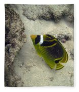 Raccoon Butterflyfish Fleece Blanket