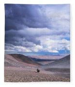 Racing With The Storm Fleece Blanket