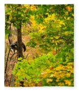 Racoon In Fall Trees Fleece Blanket
