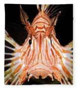 radial Lionfish Pterois radiata Fleece Blanket