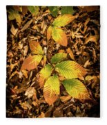 Radiant Beech Leaf Branches Fleece Blanket