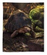 Radiated Tortoise Fleece Blanket