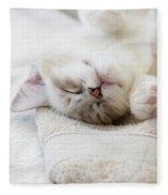 Ragdoll Kitten Asleep Fleece Blanket