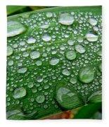 Rain Drops Fleece Blanket