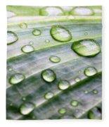 Rain Drops On A Leaf Fleece Blanket