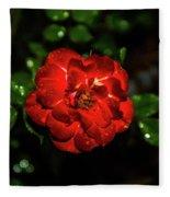 Rain Drops On A Rose Fleece Blanket