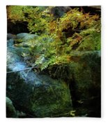 Rainbow Autumn Ferns At Pickle Creek 6303 H_3 Fleece Blanket