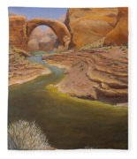Rainbow Bridge Fleece Blanket