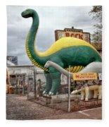 Rainbow Rock Shop Dino Fleece Blanket
