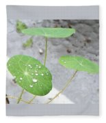 Raindrops On A Nasturtium Leaf Fleece Blanket