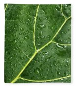 Raindrops On Fiddle Leaf Fleece Blanket