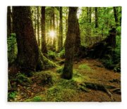 Rainforest Path Fleece Blanket