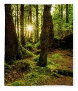 Rainforest Path Fleece Blanket