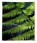 Rainforest Wonder Fleece Blanket