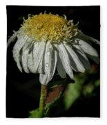 Rainy Daisy Fleece Blanket
