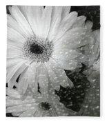 Rainy Day Daisies Fleece Blanket