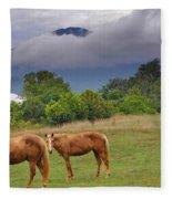 Rainy Day Fleece Blanket