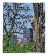 Raleigh - View From Chavis Park Fleece Blanket