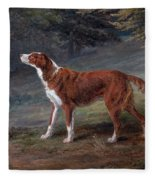 Ranger A Setter The Property Of Elizabeth Gray Fleece Blanket