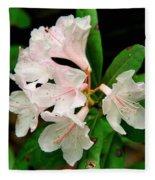 Rare Florida Beauty - Chapmans Rhododendron Fleece Blanket