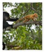 Rare Golden Monkey Fleece Blanket