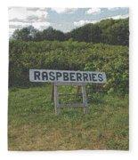 Raspberry Fields Three Fleece Blanket
