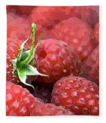 Raspberry Fleece Blanket