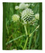 Rattlesnake Master Fleece Blanket