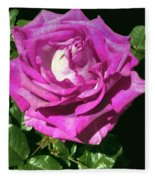 Rays Purple Passion Fleece Blanket