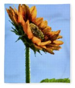 Reach For The Sun Fleece Blanket