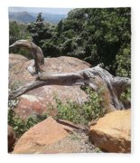 Reaching For Summits Fleece Blanket