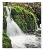 Reany Falls 1 Fleece Blanket