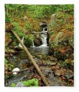 Reany Falls 2 Fleece Blanket